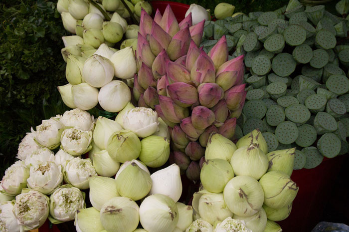 Pure lotuses in ho thi ky market