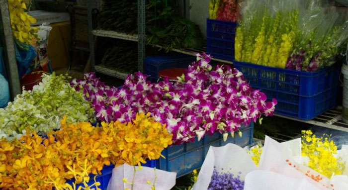 Orchids in Ho Thi Ky Flower Market